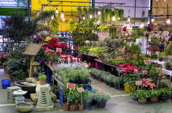 Flower Market in Taipei Stock Photography