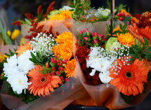 Flower market with various multicolored fresh flowers Stock Image