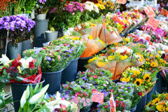Flower market with various multicolored fresh flowers Royalty Free Stock Photography