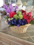 Flower me design Stock Images