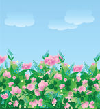 Flower meadow. And blue sky Royalty Free Stock Photography