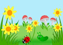 Flower Meadow. Meadow with yellow flowers, mushrooms, a ladybug and a caterpillar Stock Image