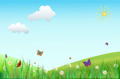 Flower Meadow With Butterflies Royalty Free Stock Images