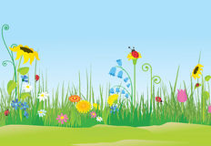 Flower meadow with ladybugs. Color illustration Stock Images