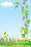 Flower meadow with ladybugs. Color illustration Royalty Free Stock Photo