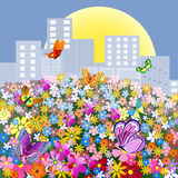 Flower meadow outside the city Stock Images