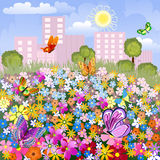 Flower meadow outside the city Royalty Free Stock Image