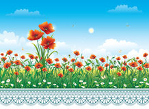 Flower meadow with poppie. S against the sky with clouds and ornament vector illustration