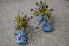 Flower men shoes Royalty Free Stock Photo