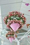Flower mobile hanging pot Stock Images