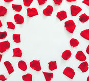Flower mosaic of the petals of scarlet roses on a white background with round space for text Stock Photo