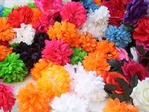 Flower multicolor Stock Photos