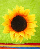Flower on multicolor towels Royalty Free Stock Image