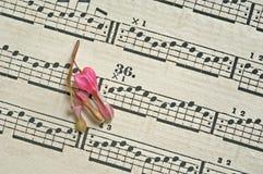 Flower on music sheet stock images