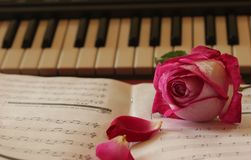 Flower on music sheet, piano in the background stock images