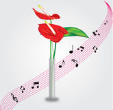 Flower with musical background. Anthurium flower in glass vase with musical background Royalty Free Stock Photos
