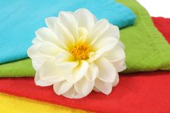 Flower napkin Royalty Free Stock Photography