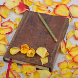 Flower with note book on roses background. Flower with note book and pen on roses background stock photography