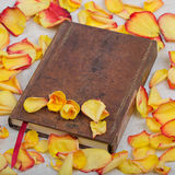 Flower with note book on roses background. Flower with note book and pen on roses background stock images
