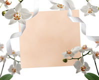 Flower note card invitation. Note card with orchids and ribbons around Royalty Free Stock Photos