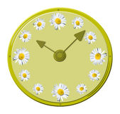 Flower o'clock Stock Photo