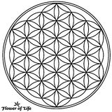 Flower Of Life Royalty Free Stock Photos