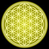 FLOWER OF LIFE Sacred Geometry Stock Photos
