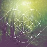 Flower Of Life - The Interlocking Circles Ancient Symbol In Front Of Blurred Photorealistic Nature Background. Sacred Geometry - M Stock Photo