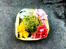Flower Offerings 01. Flower Offerings from Bali Royalty Free Stock Image