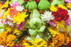 Flower offerings for Buddha Royalty Free Stock Photo