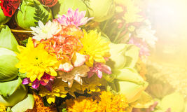 Flower offerings for Buddha Stock Photography