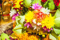 Flower offerings for Buddha Royalty Free Stock Photos