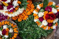 Flower Offerings to Shiva stock photo