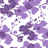Flower orchid decoration design seamless texture pattern Royalty Free Stock Images