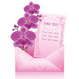 Flower orchid in envelope over white Royalty Free Stock Photo