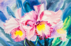 Flower original watercolor painting purple ,pink color of cattleya flower Stock Photos