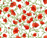 Flower ornamental seamless background Stock Photos