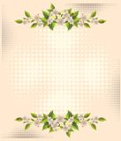 Flower over halftone backgrounds Stock Image