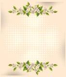 Flower over halftone backgrounds stock illustration