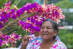 Flower & Palm Festival in Panchimalco, El Salvador Stock Images