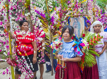 Flower & Palm Festival in Panchimalco, El Salvador Stock Photos