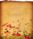 Flower paper. Textures - perfect background with space for text or image royalty free stock photo