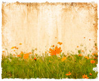 Flower paper royalty free stock photography