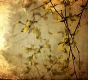 Flower paper Stock Image