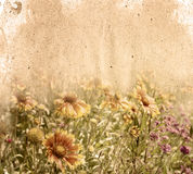 Flower paper. Textures - perfect background with space for text or image royalty free stock image