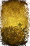 Flower paper. A grunge paper ornated with flowers Stock Photography
