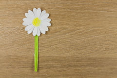 Flower from paper Stock Image