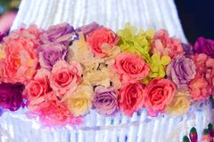 Flower paper Multi color. With light Night Royalty Free Stock Image