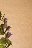Flower paper textures. Stock Photos