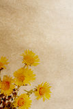 Flower paper textures. Royalty Free Stock Photos